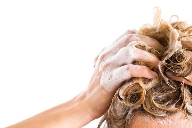 Hilseshampoo Testivoittaja